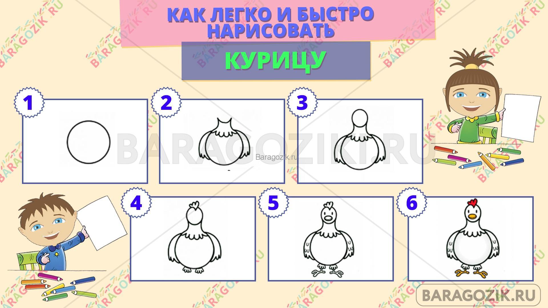 как легко нарисовать курицу - пошаговая схема