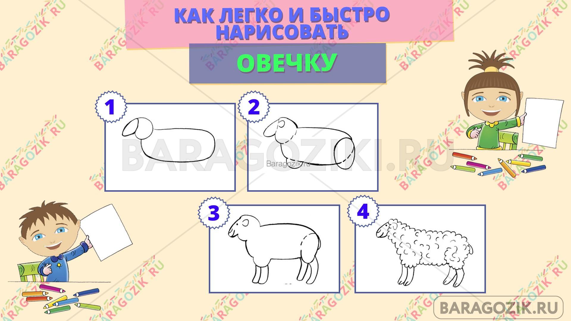 как легко нарисовать овечку - пошаговая схема