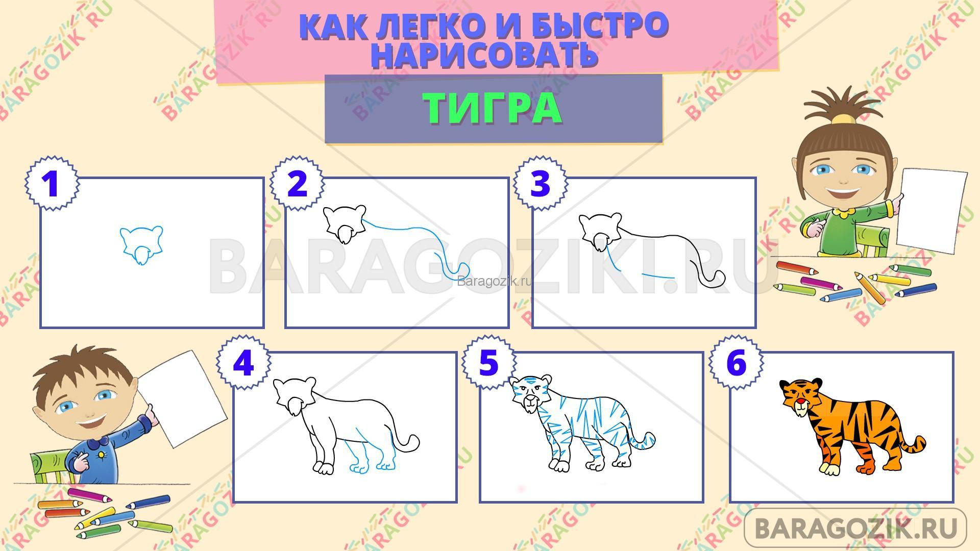 как легко нарисовать тигра - пошаговая схема