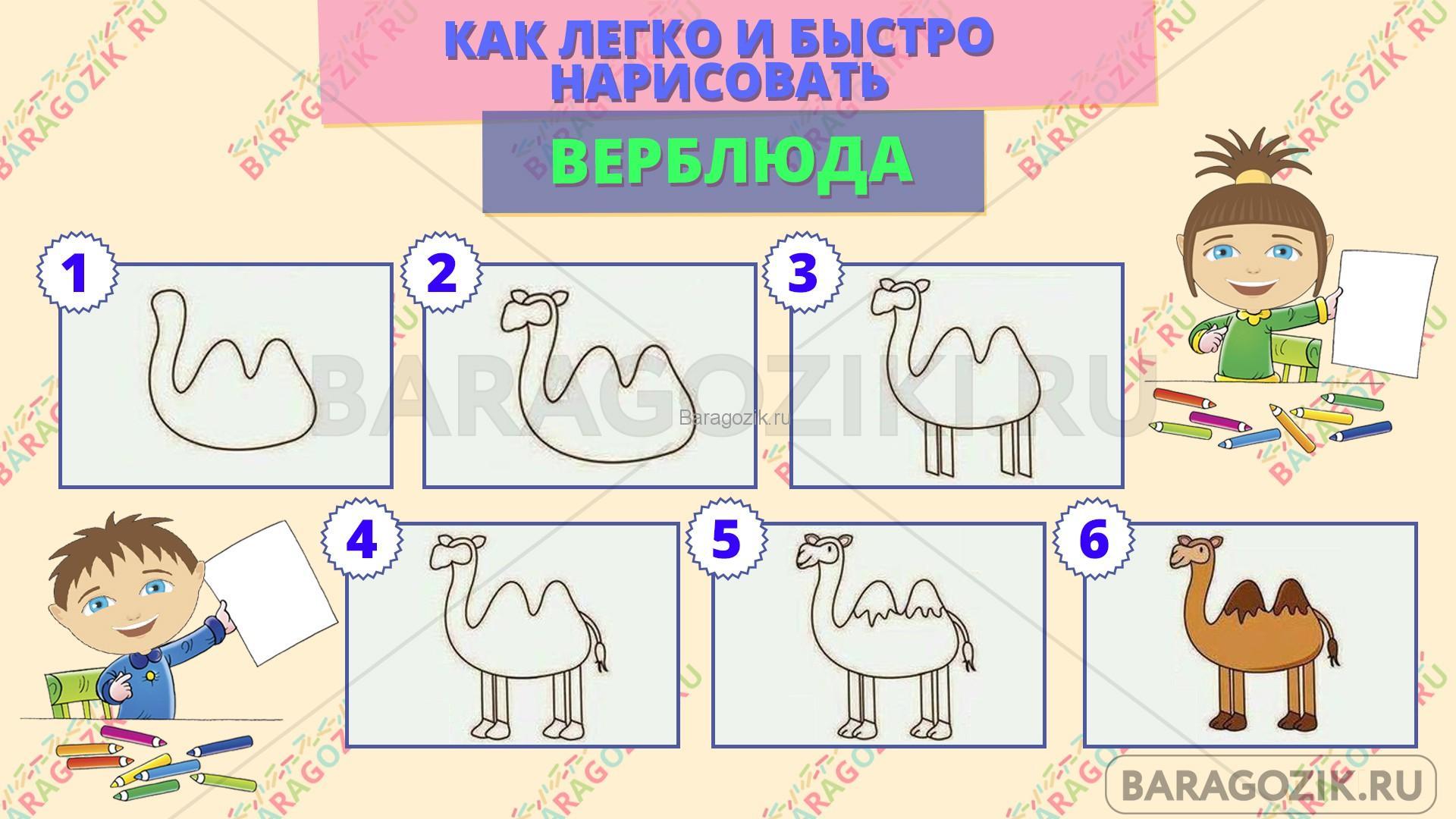 как легко нарисовать верблюда - пошаговая схема