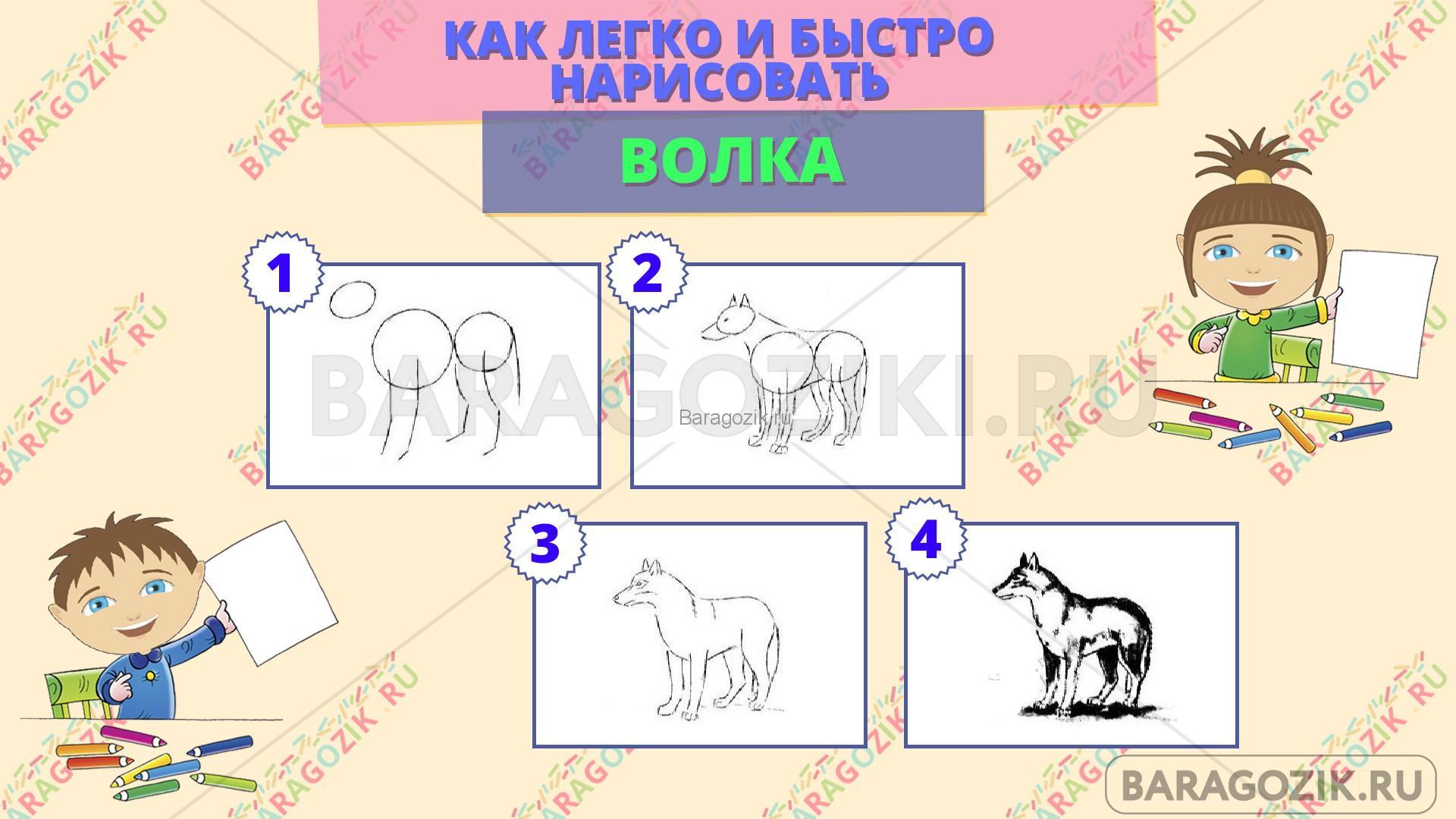 как легко нарисовать волка - пошаговая схема