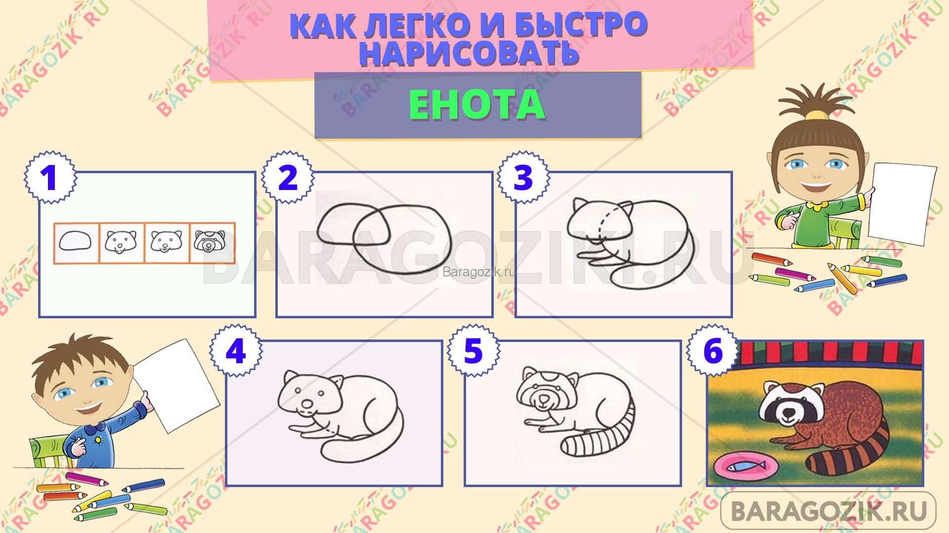 как легко нарисовать енота - пошаговая схема