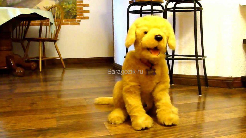 Робот-собака Бисквит