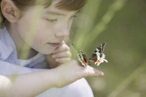 болезнь бабочки у детей