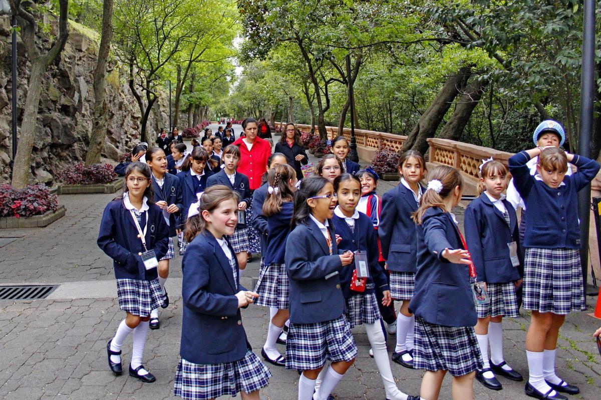 Образование в Мексике