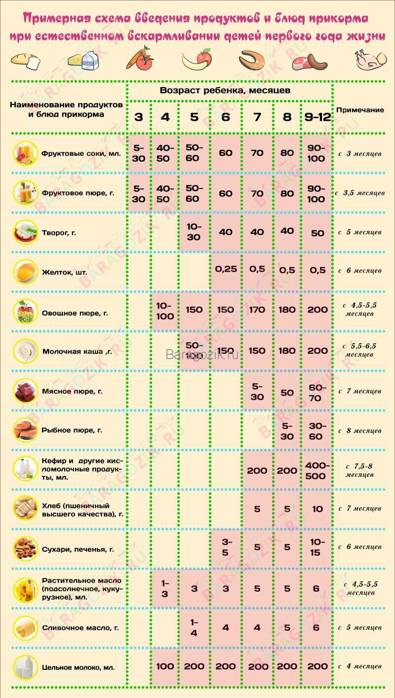 Таблица введения прикорма ребенку до года на естественном вскармливании