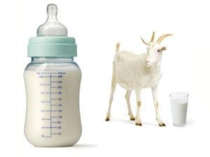 смеси на козьем молоке