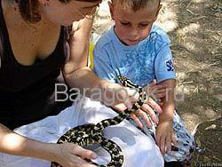 мама показывает ребенку змею