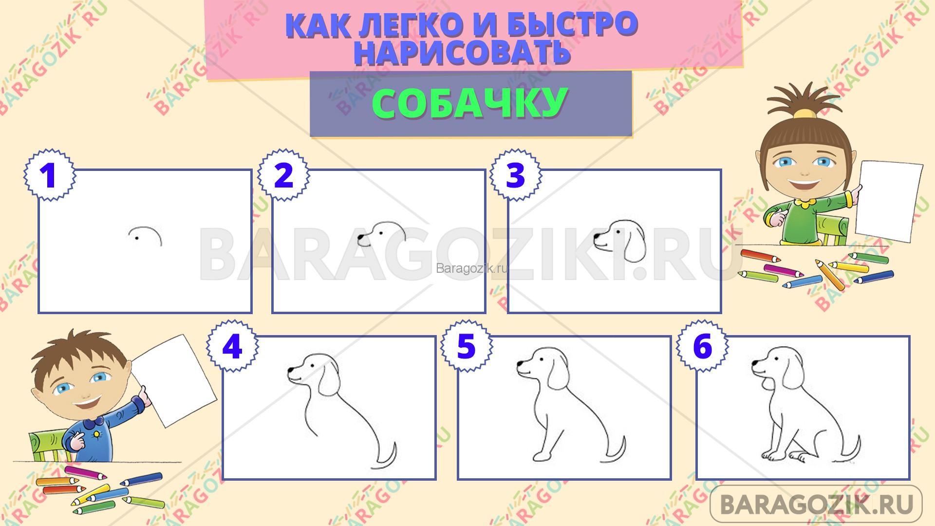 как легко нарисовать собачку - пошаговая схема