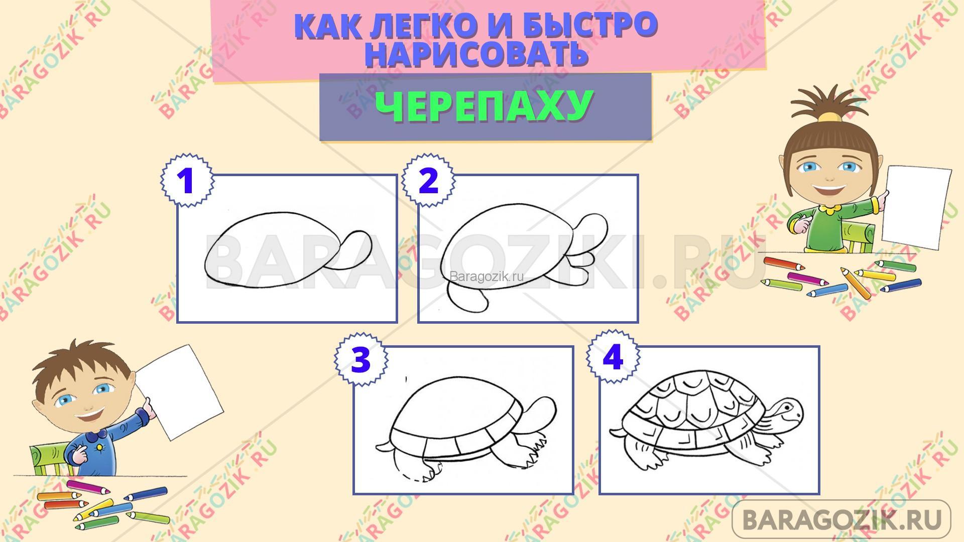как легко нарисовать черепаху - пошаговая схема