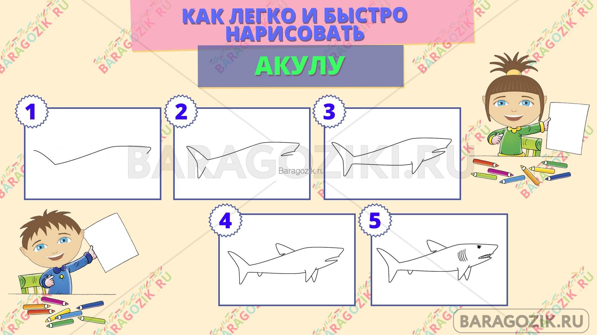 как легко нарисовать акулу - пошаговая схема