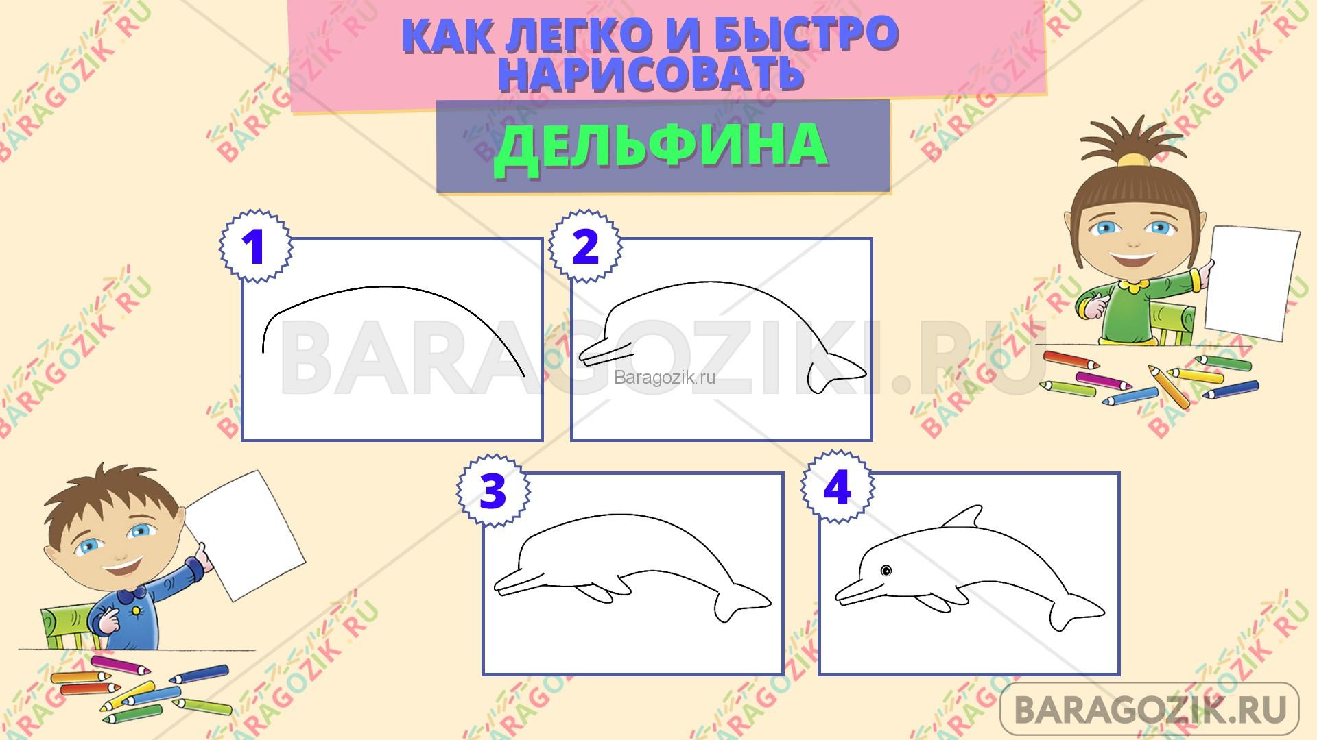 как легко нарисовать дельфина - пошаговая схема