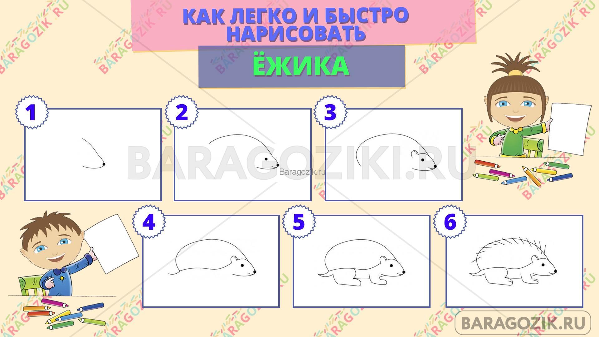 как легко нарисовать ежика - пошаговая схема