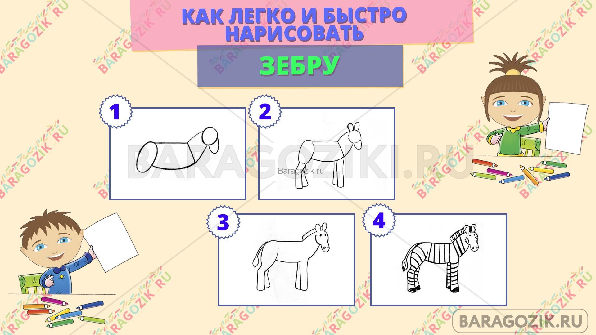 как легко нарисовать зебру - пошаговая схема