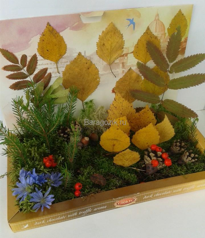 Осенний лес 10