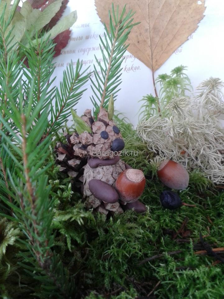 Осенний лес 9