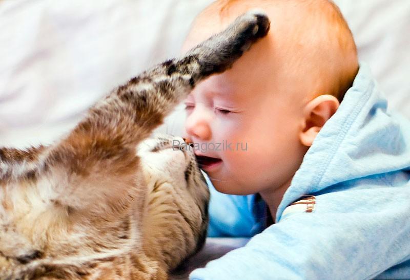 Малыш с кошкой