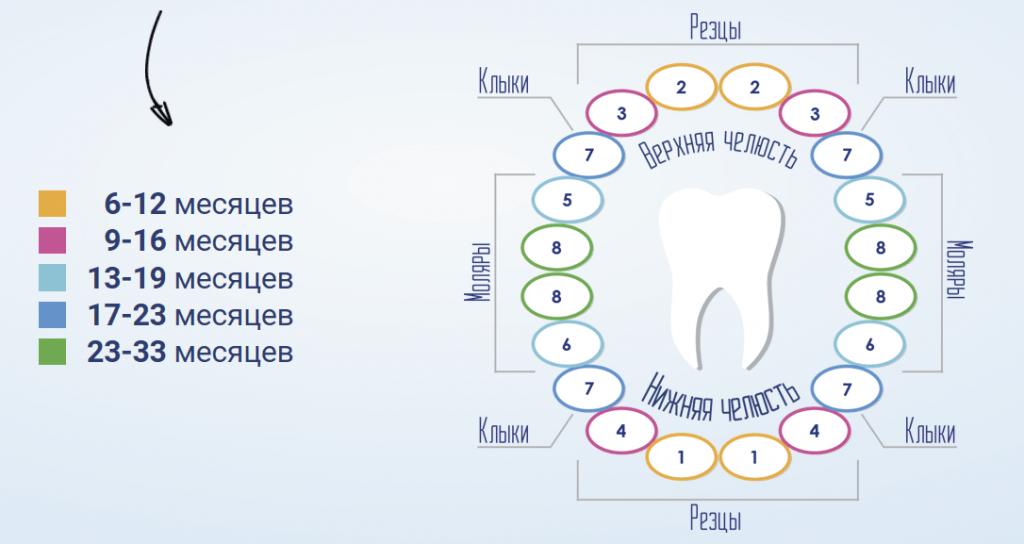 ТОП – средств при прорезывании зубов